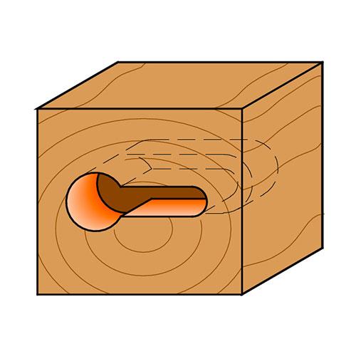 Профилен фрезер CMT D=9.5мм d=4.8мм L=54мм I=11мм S=8мм Z=1, HW, RH - big, 18846