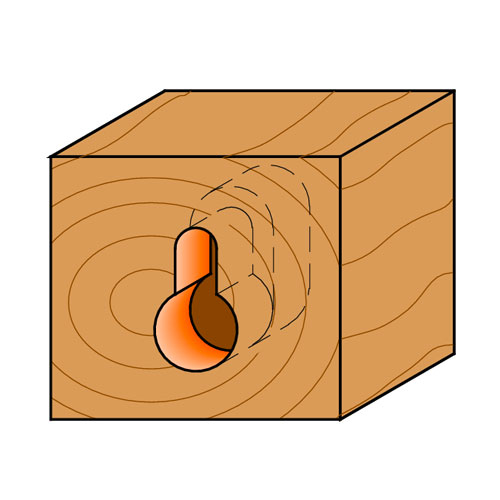 Профилен фрезер CMT D=9.5мм d=4.8мм L=54мм I=11мм S=8мм Z=1, HW, RH - big, 19392